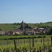 Hunawihr, route des vins d'Alsace en région Grand Est