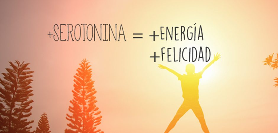 El 90% de la serotonina está generada por el intestino, o segudno cerebro, por SIS Escapadas Spa