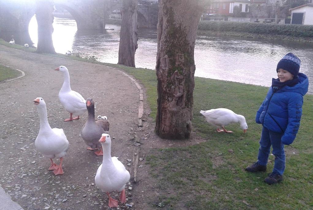 Diez paseos fluviales de Galicia en entorno urbano