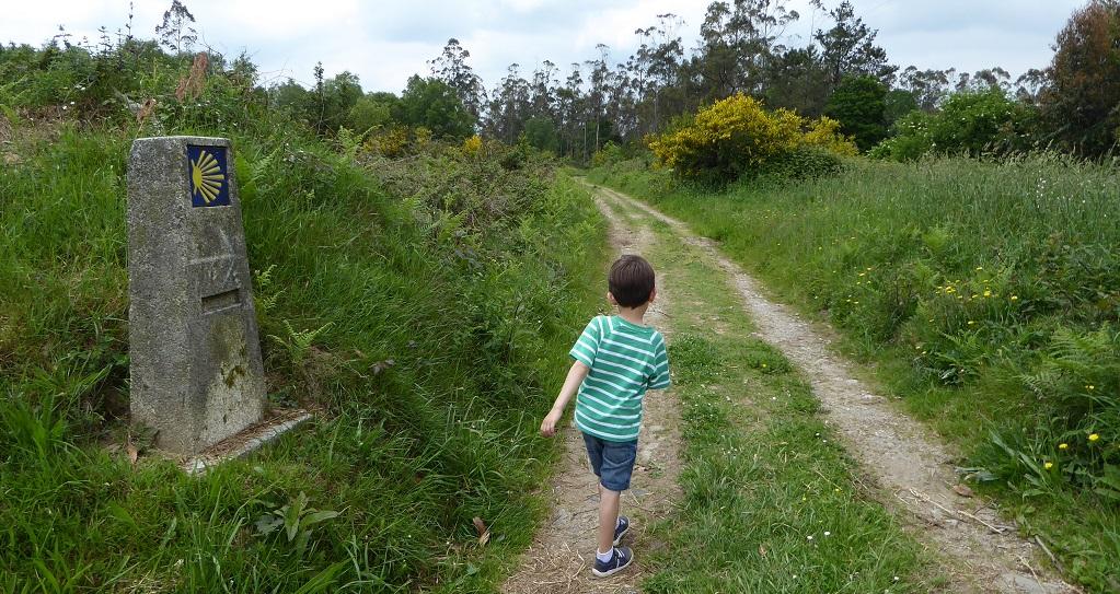 Un tramo del Camino Inglés, con niños