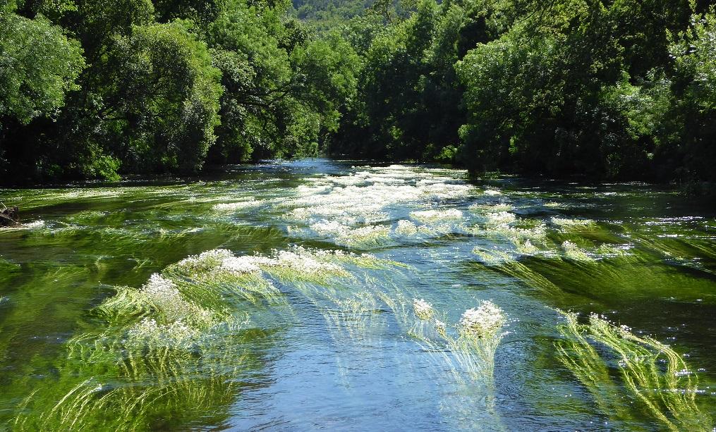 Río Tambre: área recreativa de Chaián (Trazo), con niños
