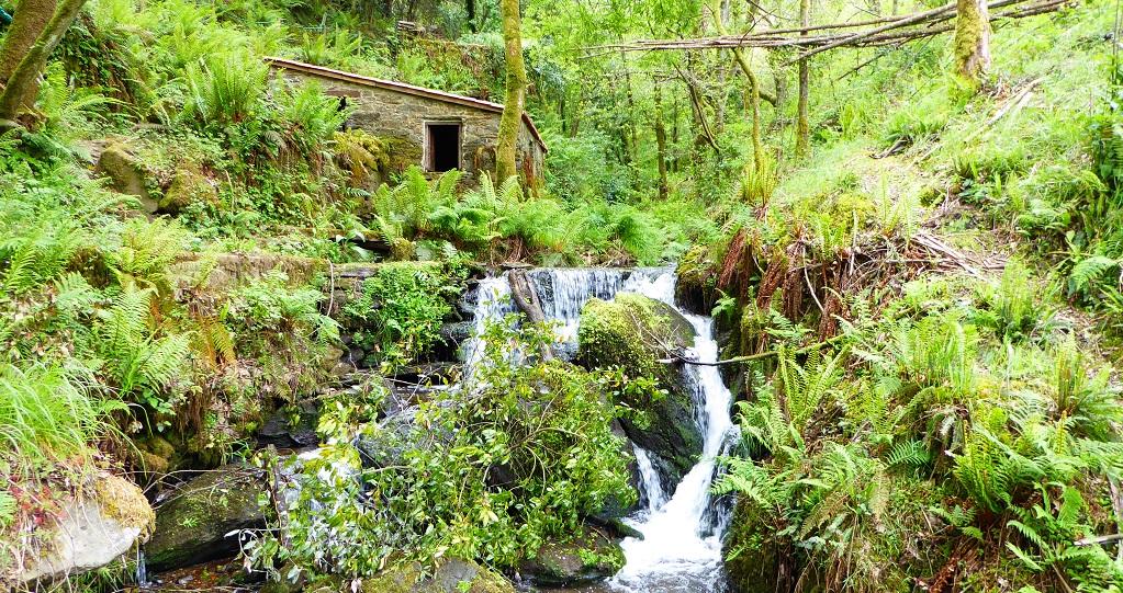Mini-ruta: molinos de Costa da Égoa