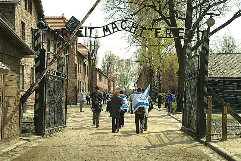 auschwitz tour group size