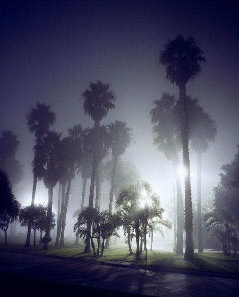 Friedman_night_05