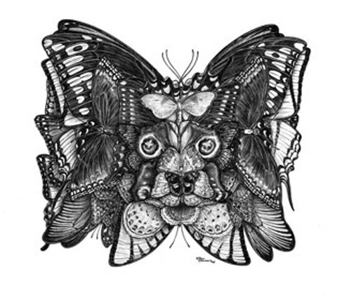 PapillonLow
