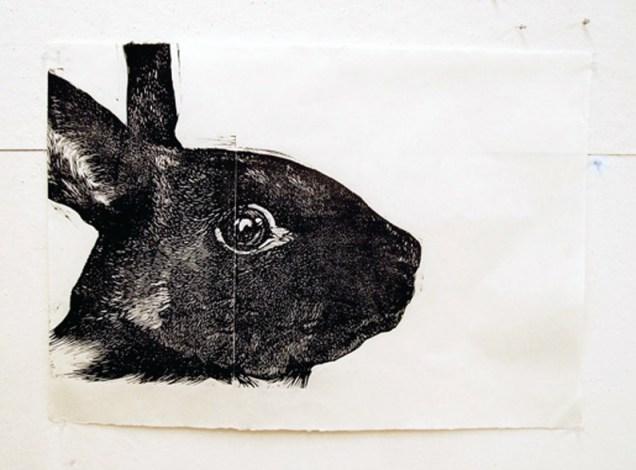 f_GAIA_rabbit