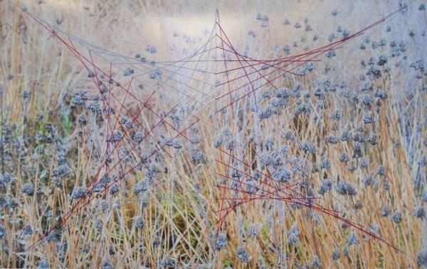 Lori Chung, Thread 7