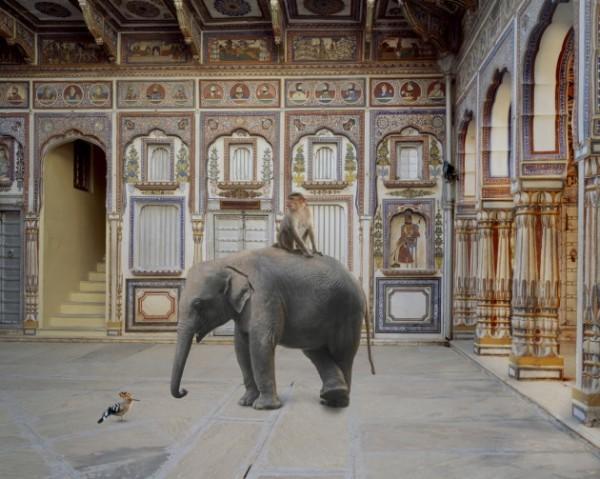 Karen Knorr_Conqueror-of-the-World-Podar-Haveli-Nwalgarh-600x479