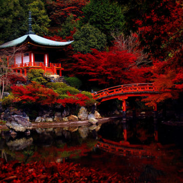 The Most Beautiful Places In The World In Pictures EscapeNormal - This amazing image is being called the most beautiful photo of kyoto ever