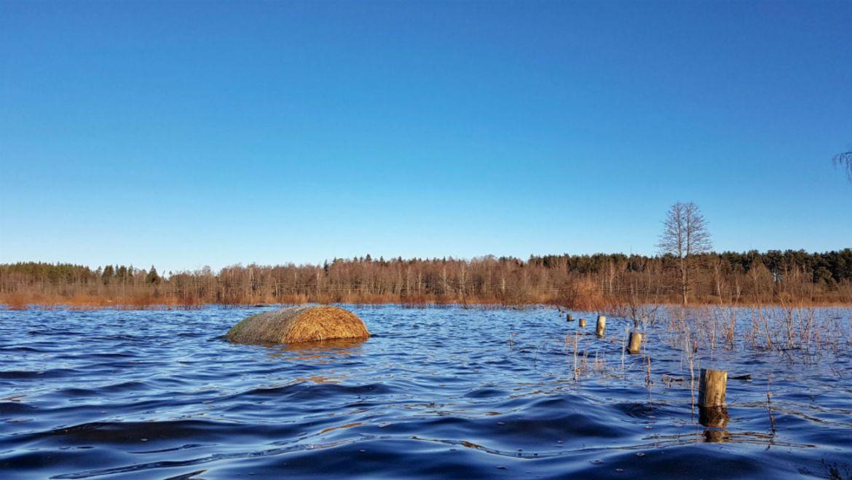 Winter kayaking _ Travel to Latvia _ Dviete Floodplain _ ESCAPERIES