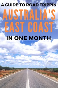 Ah Australia, the land of the epic road trips. Find out how to have the most amazing month driving up the East Coast here