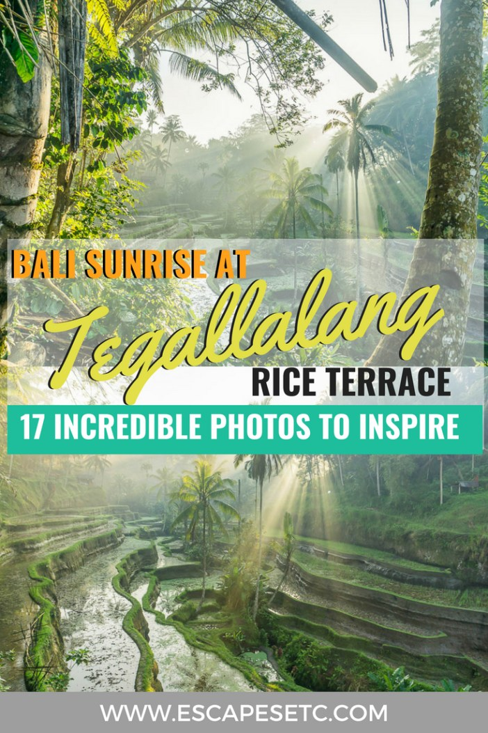 The Tegallalang rice terrace is something you have to see whilst in Bali. The best way to avoid the crowds is to visit at sunrise! Here are my favourite photos from sunrise at Tegallalang to inspire you. #bali #tegallalang #riceterrace #balisunrise #topattractionsbali #visitbali
