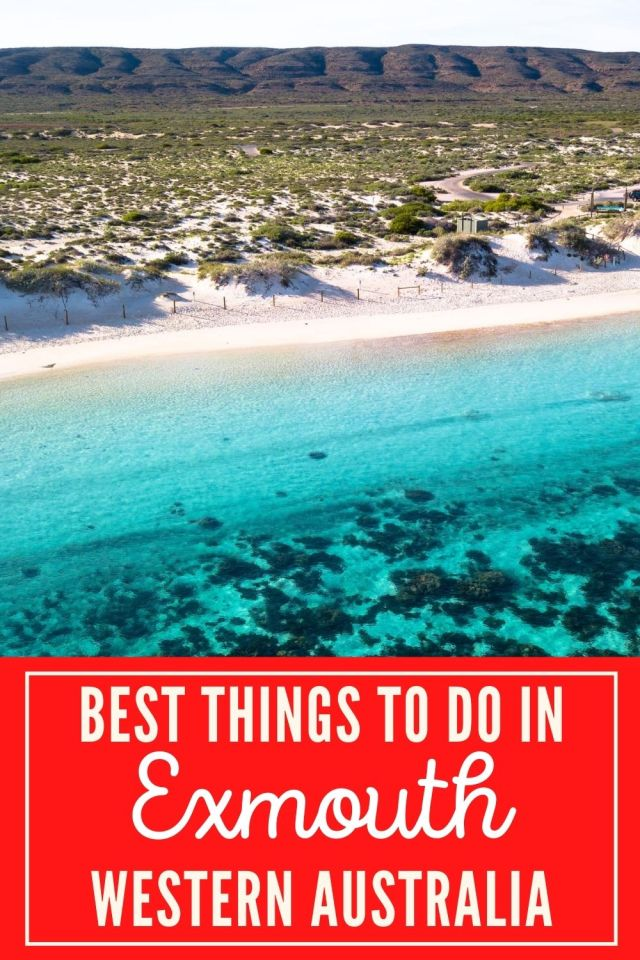 Looking for the best things to do in Exmouth Western Australia? This Exmouth guide will show you the best Exmouth Beaches for snorkelling the Ningaloo Reef and how to experience Cape Range National Park. Don't miss out on the best campsite in Exmouth either! #exmout #exmouthwa #ningalooreef #caperangenationalpark
