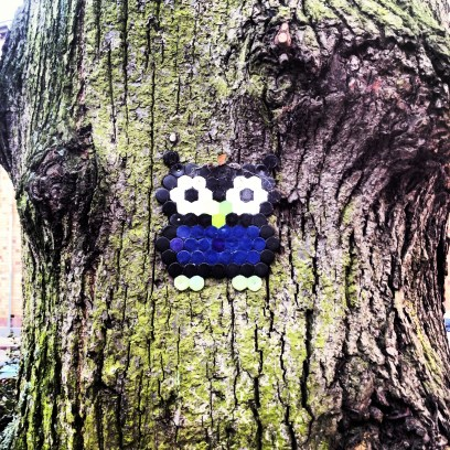 rad owl