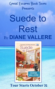 SUEDE TO REST SMALL BANNER