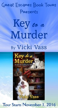 key-to-a-murder-small-banner