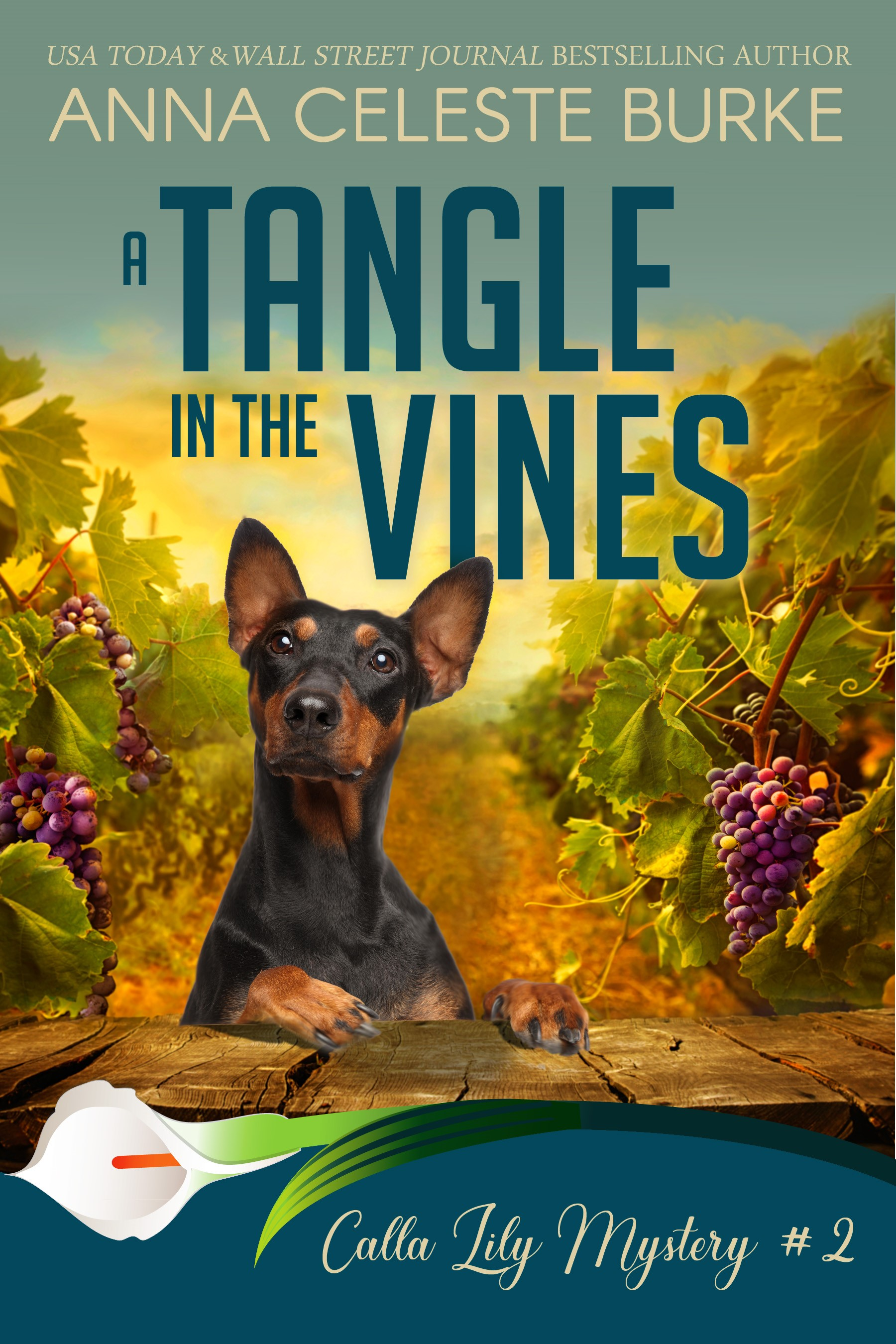 The Celeste: Tangled in Vines and Webbs