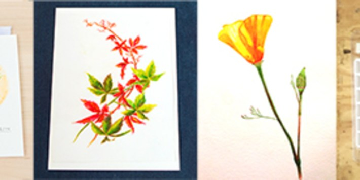 Beginner's Watercolor: Florals and Botanicals (ONLINE CLASS)