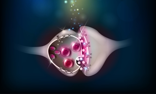 Dopamina: cómo aprovecharla en Neuromarketing