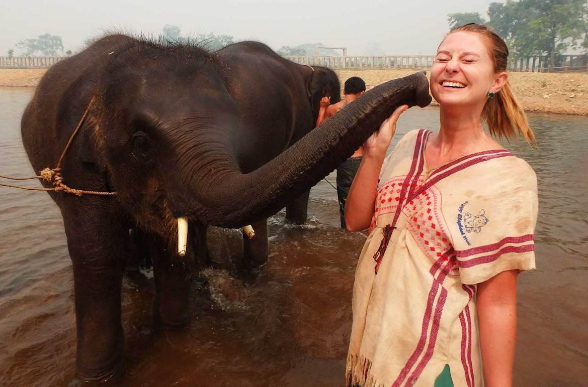 Fotos de viagem - Centro de recuperação de elefantes, Chiang Mai (Tailândia)