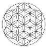 la flor de la vida - escuela de geometria sagrada