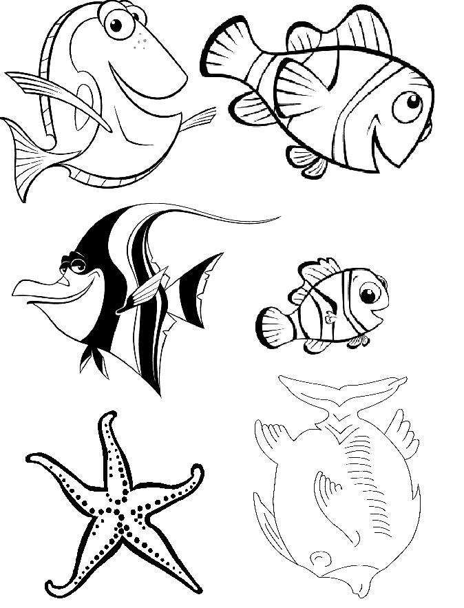 Animales acu ticos para colorear for Como hacer una granja de peces