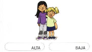 ALTA-BAJA