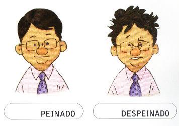PEINADO-DESPEINADO