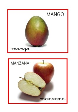 Frutas variadas_005