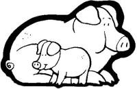 cerdos[2]