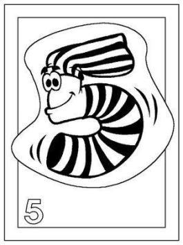09numero5