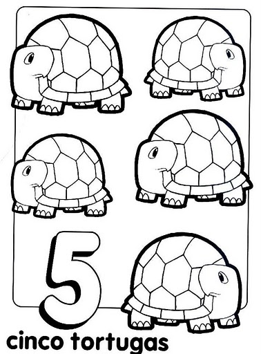 30numero5