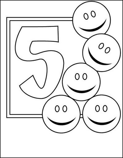 31numero5