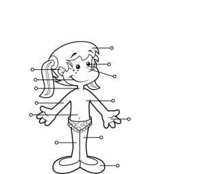 el curpo humano, fichas para imprimir, recursos para el maestro