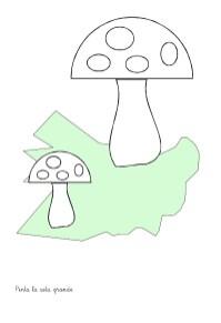 conceptos, dibujos para colorear, fichas primaria e infantil