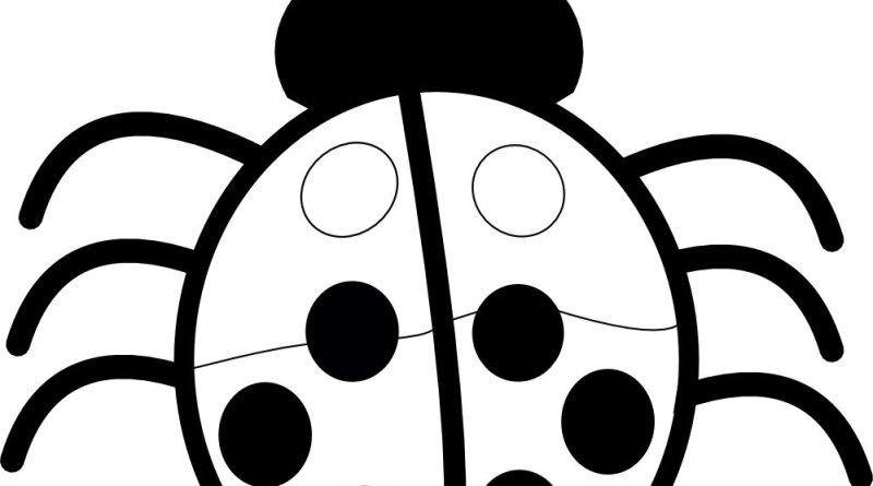 Dibujos De Insectos Para Colorear Para Ninos: Dibujos Para Colorear: Insectos En Primavera