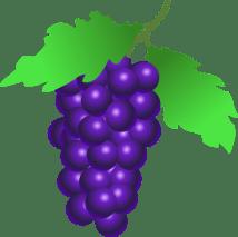 frutas_verduras19