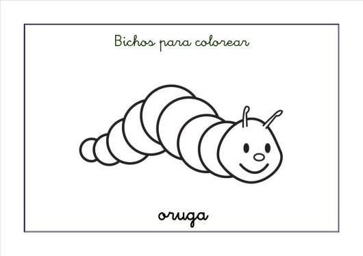 Dibujos para colorear: Bichos e insectos