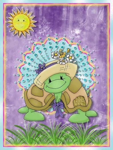 Imágenes Tortugas