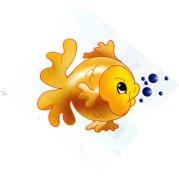 animales marinos 23