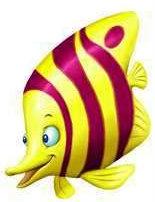 animales marinos 60