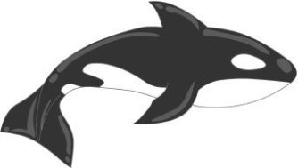 animales marinos 66