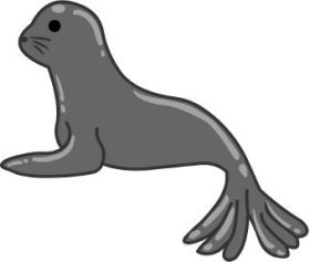 animales marinos23
