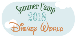TEO Summer Camp 2018
