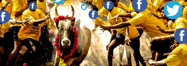 Social Media Helped Jallikattu Revolution