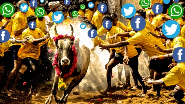Social Media Helped Jallikattu Revolution