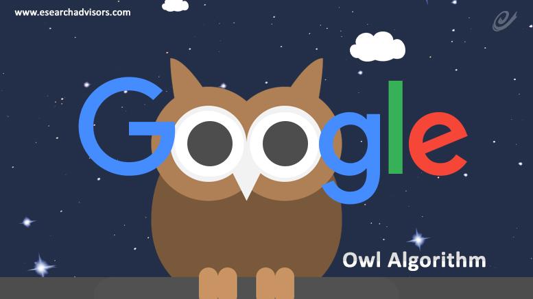 Google's Project Owl