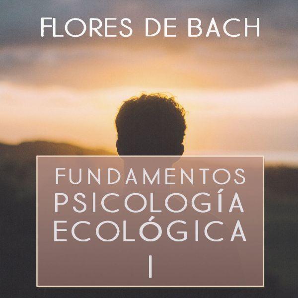 Fundamentos Psicología Ecológica 1