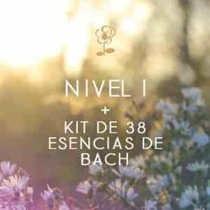 curso Centro Edward Bach y Kit de esencias