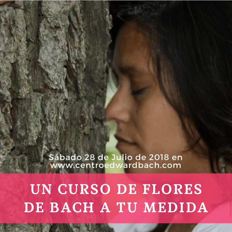 curso de flores de bach julio 2018